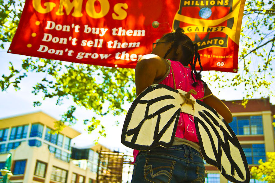 Girl with Butterfly wings in front to a GMO Banner