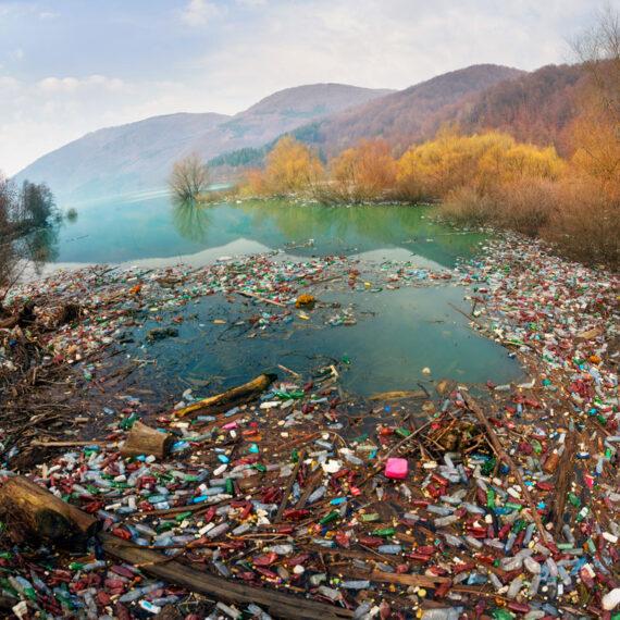 #1 Single-Use Plastics