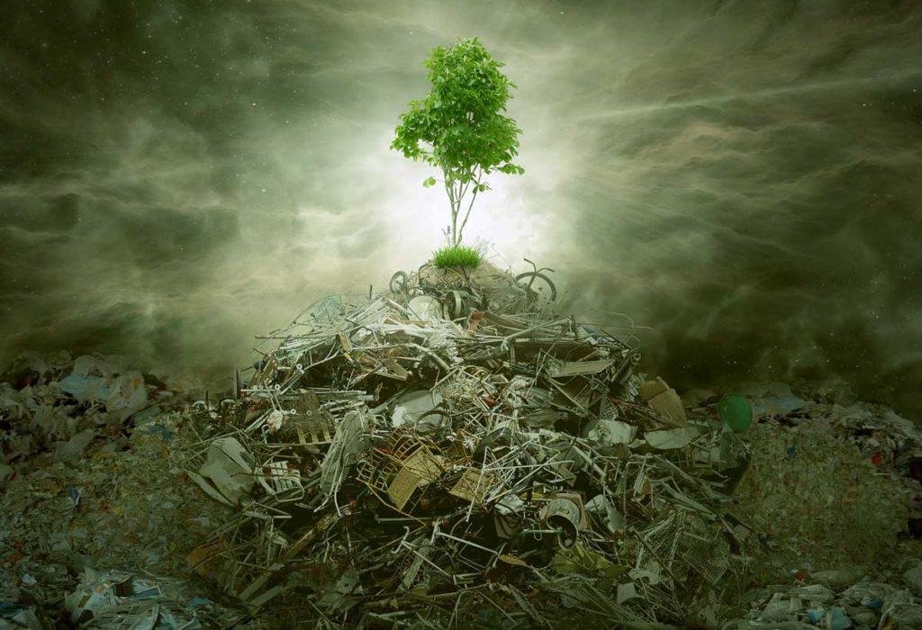 #74 Waste Management