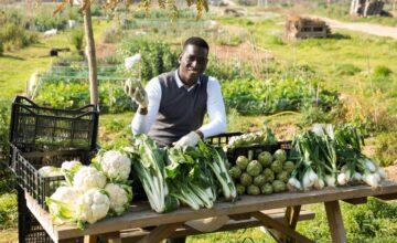 #106 Regenerative Agriculture