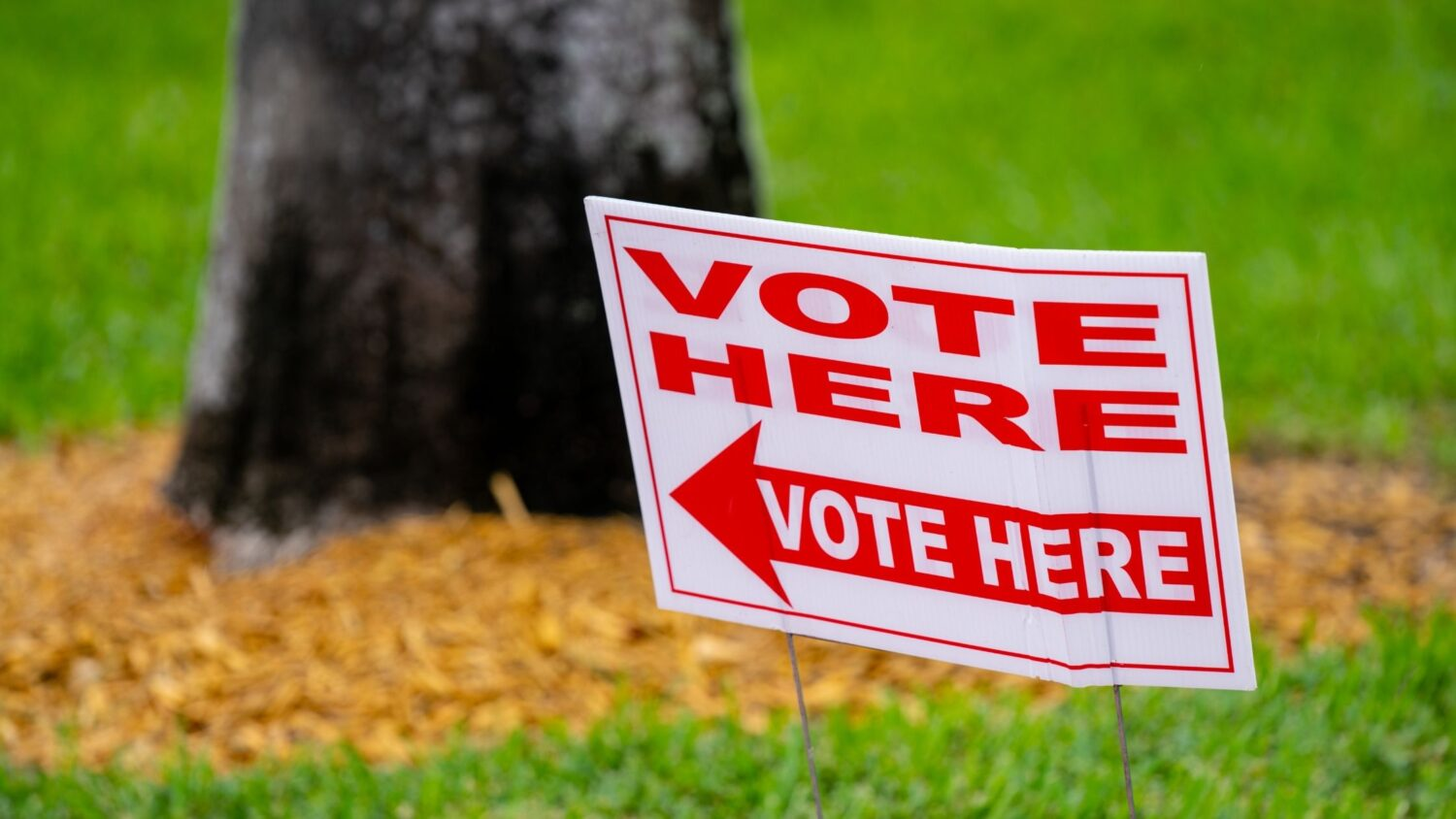 What To Do With Those Election Signs